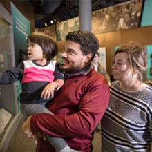 Family Viewing Exhibits