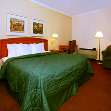 Quality Inn Wickliffe king room